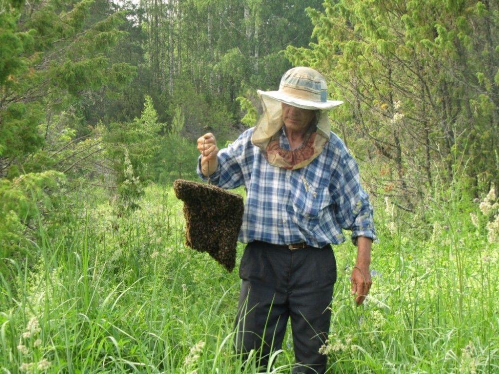 Знакомства Пчеловодов