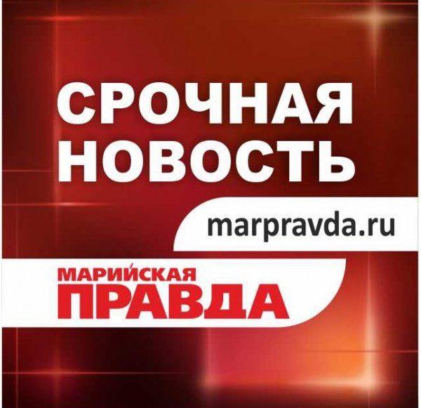 ВЙошкар-Оле напешеходных переходах сбили 2-х мужчин