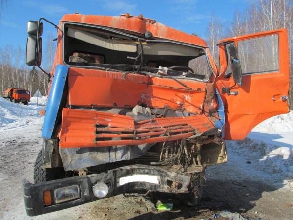 ВСемикарарском районе отлобового столкновения сКамАЗом умер шофёр иномарки